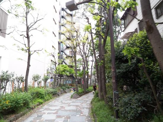 花園09.JPG