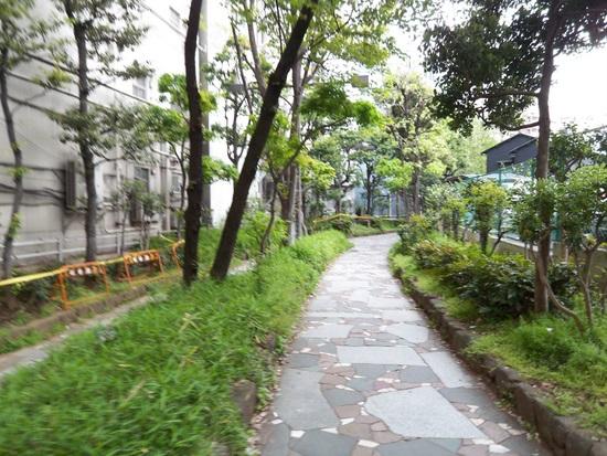 花園10.JPG