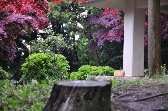 鎌倉20.JPG